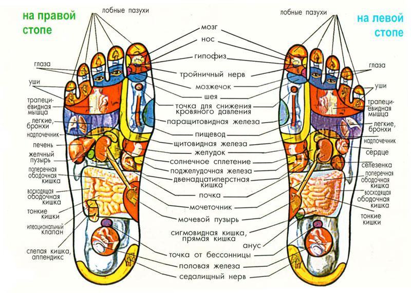 akupunktura-nog.jpg