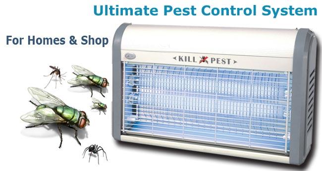 kill-pest-banner.jpg